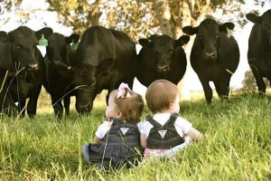 two babies in front of cows