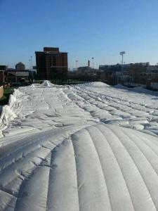 University of Cincinnati Bubble _ Bell Moving
