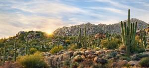 Scottsdale-Desert-300x137