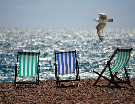 3 beach chairs on beach with seagull flying overhead