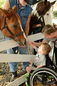 pony ride fundraiser for GKTW